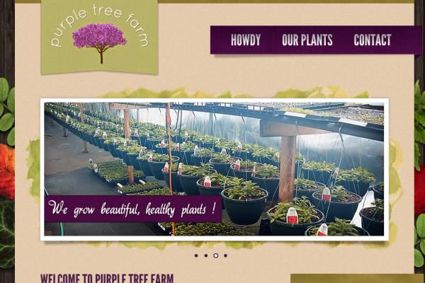 Purple Tree Farm