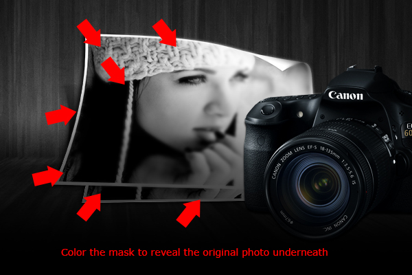 Learn How To Create a Stylish Photography Layout