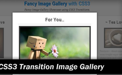 4-Fancy-Image-Gallery-with-CSS3-Transitions